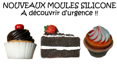 http://blog.placedesloisirs.com/wp-content/uploads/2012/03/une-moules-silicone.jpg